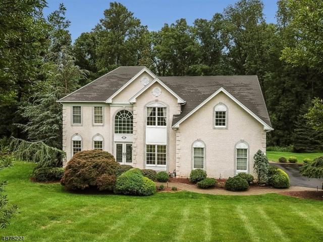 10 Courtney Dr, Mount Olive Twp., NJ 07836 (MLS #3539041) :: Coldwell Banker Residential Brokerage