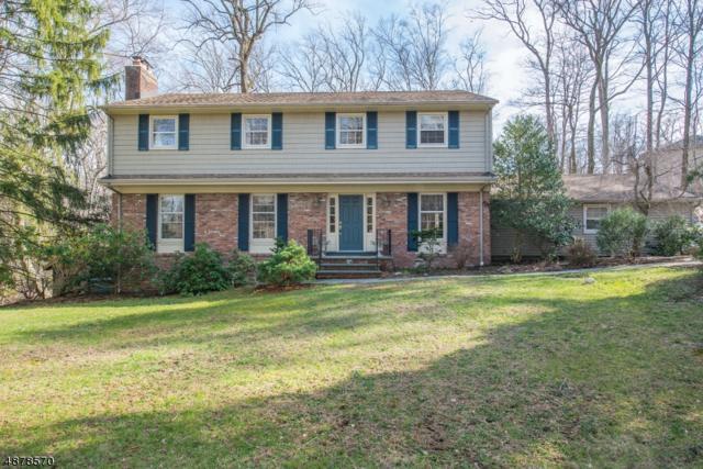 31 Brookvale Rd, Kinnelon Boro, NJ 07405 (MLS #3539124) :: The Dekanski Home Selling Team