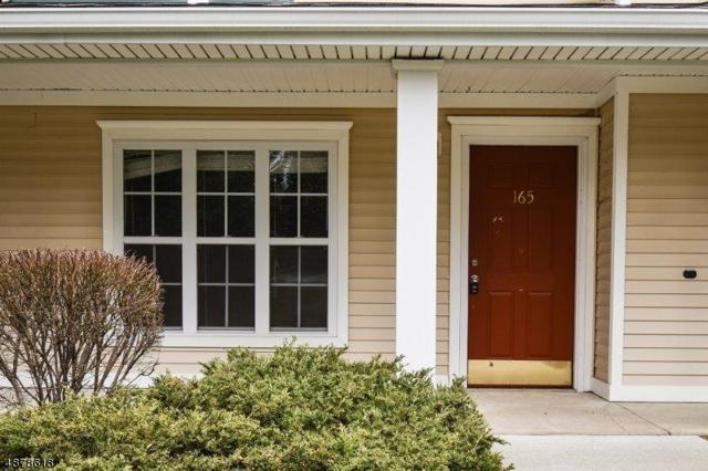 165 Old Farm Dr, Allamuchy Twp., NJ 07838 (MLS #3539149) :: The Dekanski Home Selling Team