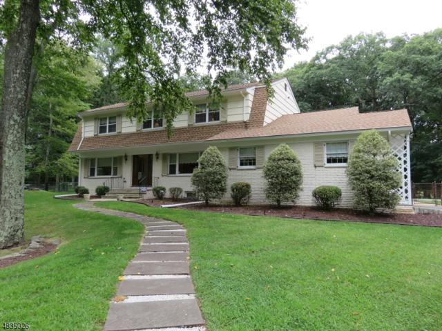 64 Urban Club Rd, Wayne Twp., NJ 07470 (#3539254) :: Group BK