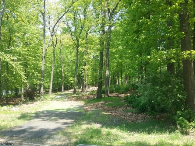 3 Red Oak Row, Chester Twp., NJ 07930 (MLS #3539453) :: Coldwell Banker Residential Brokerage