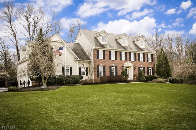 59 Coddington Ct, Montgomery Twp., NJ 08502 (MLS #3539521) :: Coldwell Banker Residential Brokerage