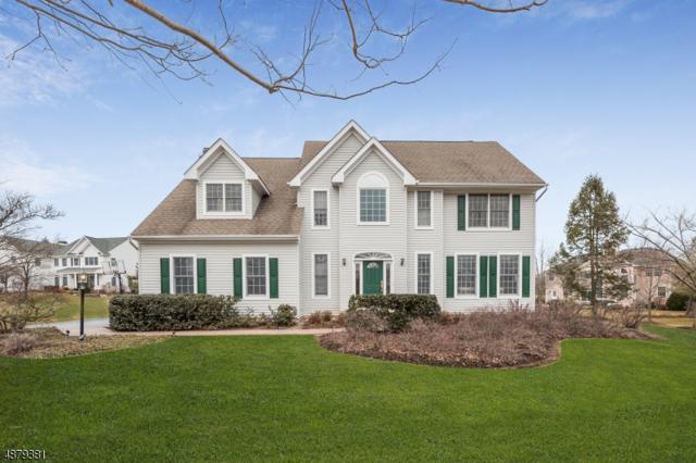 1 N Shore Ct, Montgomery Twp., NJ 08558 (MLS #3539817) :: Coldwell Banker Residential Brokerage