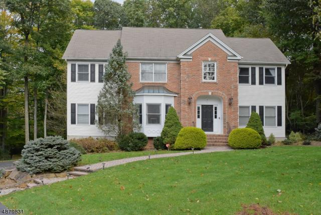 7 Twins Ct, Randolph Twp., NJ 07869 (MLS #3540200) :: The Douglas Tucker Real Estate Team LLC