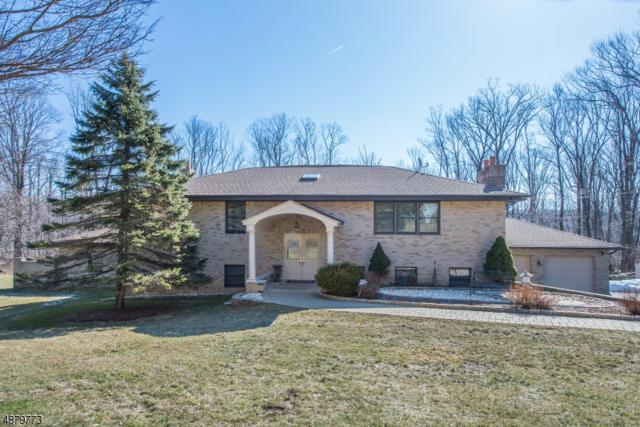 21 Old Brookside Rd, Randolph Twp., NJ 07869 (MLS #3540259) :: The Sikora Group