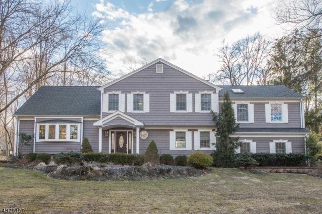 2 Lookout Rd, Randolph Twp., NJ 07869 (MLS #3540280) :: The Sikora Group