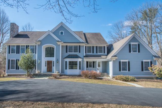 2 Cedar Ridge Dr, Chester Twp., NJ 07930 (MLS #3540344) :: Coldwell Banker Residential Brokerage