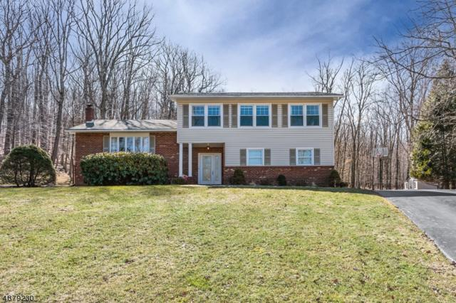 75 Parkview Dr, Roxbury Twp., NJ 07876 (MLS #3540368) :: Team Francesco/Christie's International Real Estate
