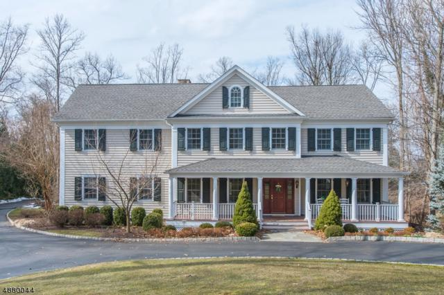 256 Hartshorn Dr, Millburn Twp., NJ 07078 (MLS #3540497) :: SR Real Estate Group