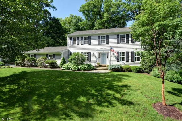 15 Chandler Rd, Chatham Boro, NJ 07928 (MLS #3540564) :: Coldwell Banker Residential Brokerage