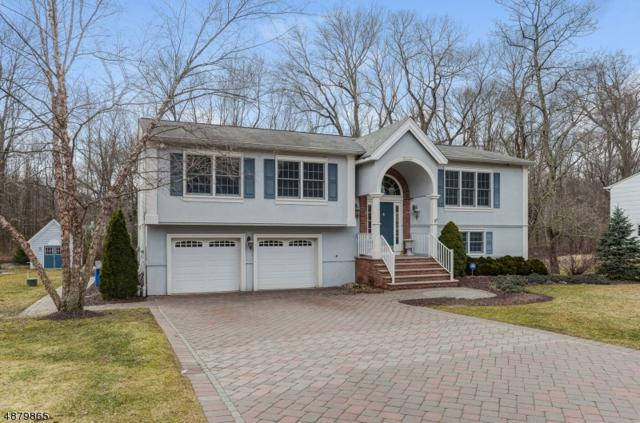 26 Clifford Dr, Montville Twp., NJ 07082 (MLS #3540670) :: William Raveis Baer & McIntosh
