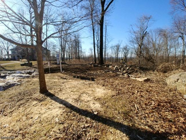 3 Boulder Ct, Boonton Twp., NJ 07005 (MLS #3540715) :: REMAX Platinum