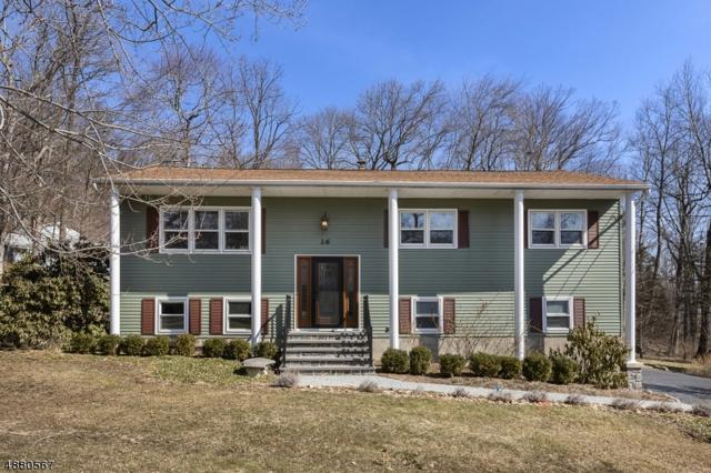 16 Holly Dr, Denville Twp., NJ 07834 (MLS #3540933) :: Mary K. Sheeran Team