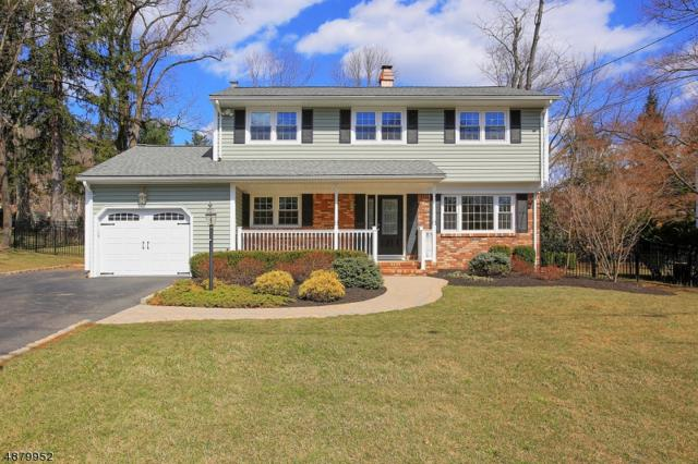 290 Stirling Rd, Watchung Boro, NJ 07069 (MLS #3540945) :: The Douglas Tucker Real Estate Team LLC