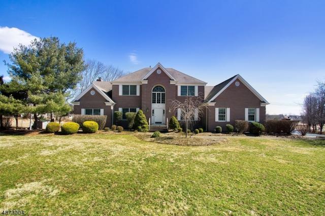 234 Johnson Rd, Readington Twp., NJ 08889 (MLS #3541058) :: Coldwell Banker Residential Brokerage
