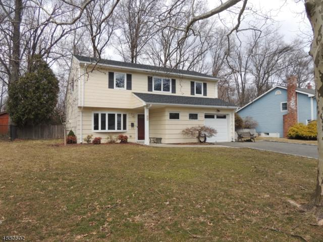 59 Locust Ave, Fanwood Boro, NJ 07023 (MLS #3541116) :: The Dekanski Home Selling Team