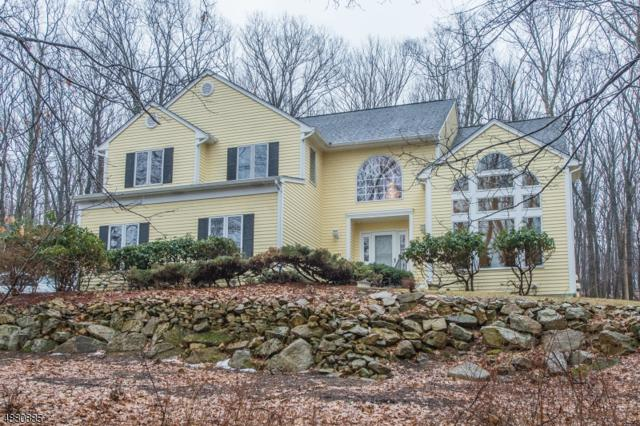 140 Flanders-Drakestow, Mount Olive Twp., NJ 07836 (MLS #3541360) :: William Raveis Baer & McIntosh