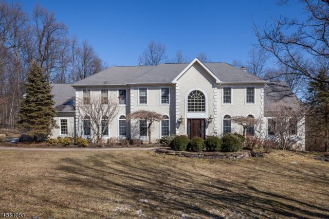 5 Luce Dr, Chester Twp., NJ 07930 (#3541413) :: Jason Freeby Group at Keller Williams Real Estate