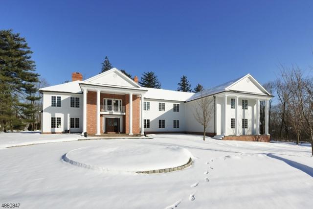 765 Ewing Ave, Franklin Lakes Boro, NJ 07417 (#3541434) :: Jason Freeby Group at Keller Williams Real Estate