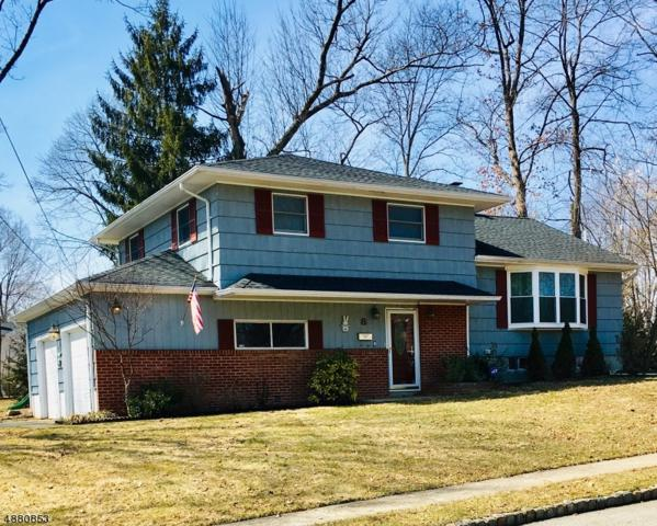 8 Kadel Dr, Roxbury Twp., NJ 07876 (MLS #3541541) :: The Dekanski Home Selling Team
