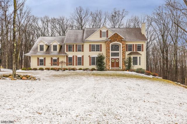 28 Kern Dr, Mount Olive Twp., NJ 07836 (MLS #3541656) :: The Dekanski Home Selling Team