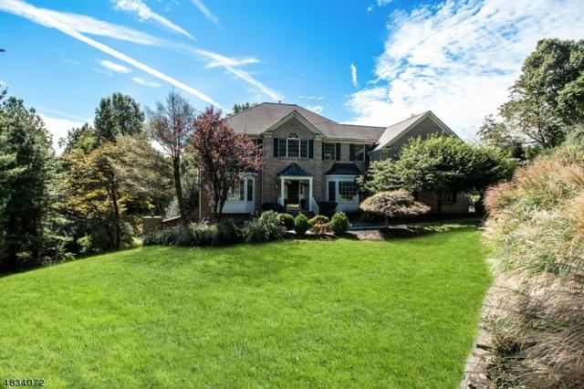 16 Beacon Hill Dr, Chester Twp., NJ 07930 (MLS #3541662) :: SR Real Estate Group