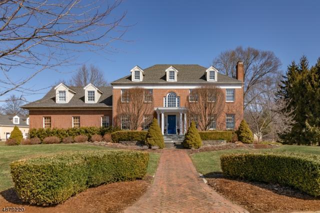 33 Jeffrey Ct, Bernards Twp., NJ 07920 (MLS #3541696) :: Coldwell Banker Residential Brokerage