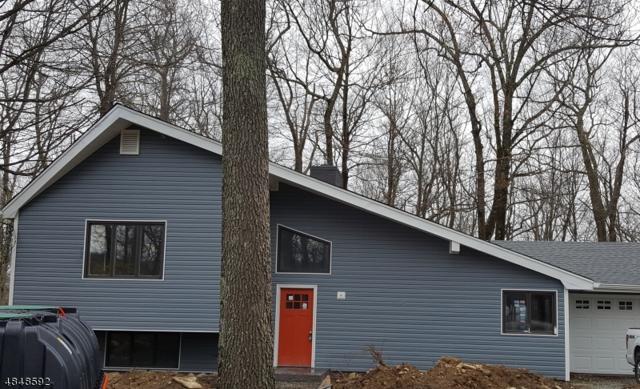 18 Neosha Rd, Vernon Twp., NJ 07422 (MLS #3542227) :: SR Real Estate Group