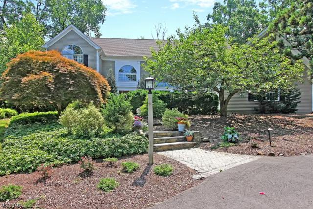 5 Waldron Rd, Bridgewater Twp., NJ 08836 (MLS #3543007) :: The Dekanski Home Selling Team
