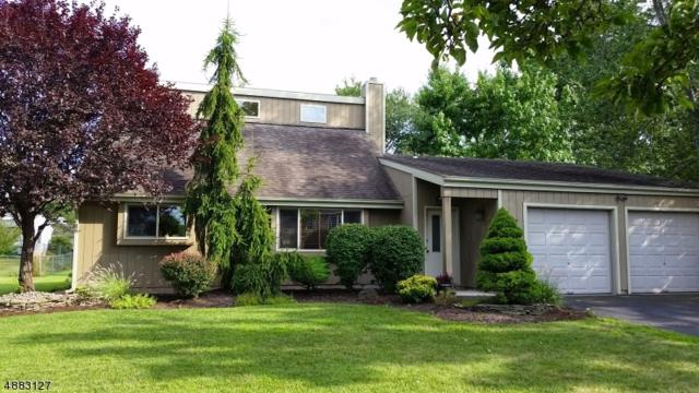 19 Sewell Ave, Piscataway Twp., NJ 08854 (MLS #3543327) :: REMAX Platinum