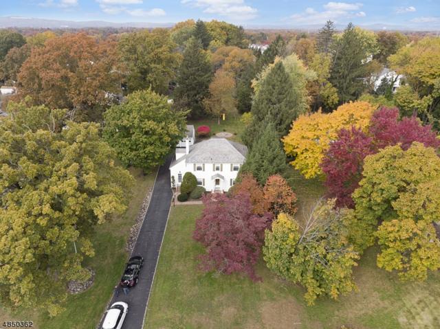 49 Troy Hills Rd, Hanover Twp., NJ 07981 (MLS #3543627) :: The Debbie Woerner Team