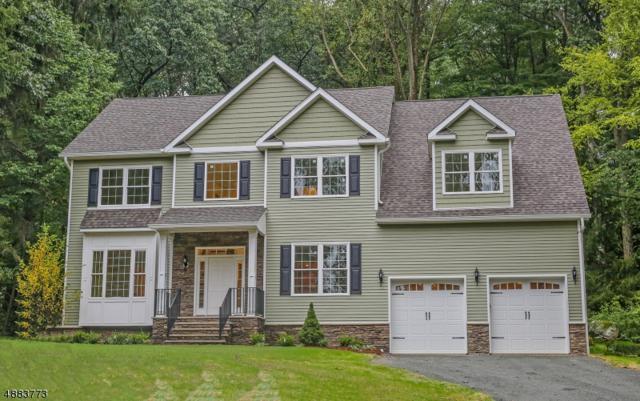 21 N Shore Trl, Sparta Twp., NJ 07871 (MLS #3543860) :: SR Real Estate Group