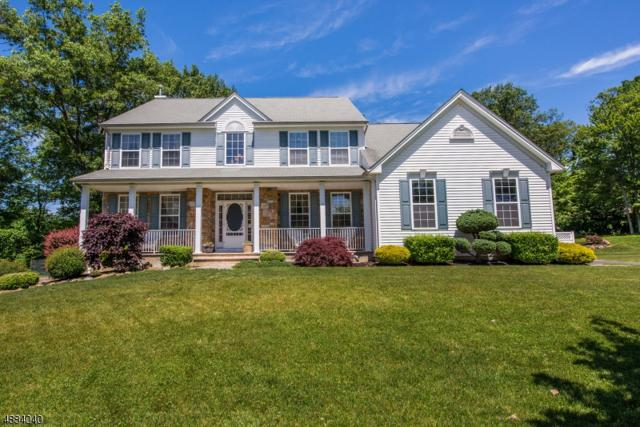 6 Bromley Ct, Mount Olive Twp., NJ 07840 (MLS #3544736) :: The Sue Adler Team