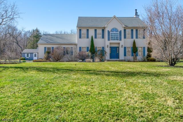 165 Berkshire Valley Rd, Roxbury Twp., NJ 07847 (MLS #3545040) :: REMAX Platinum