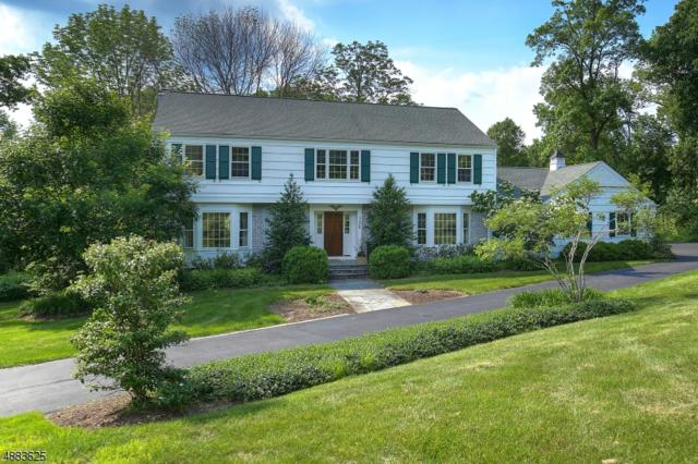 126 Lees Hill Rd, Harding Twp., NJ 07920 (MLS #3545862) :: SR Real Estate Group
