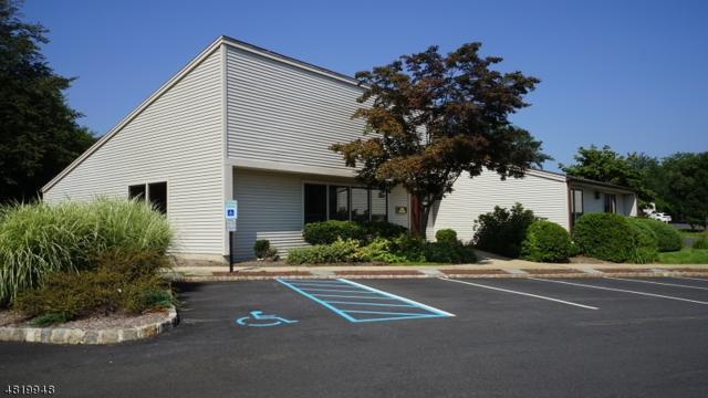 5 Cold Hill Rd, Mendham Boro, NJ 07945 (MLS #3546723) :: William Raveis Baer & McIntosh