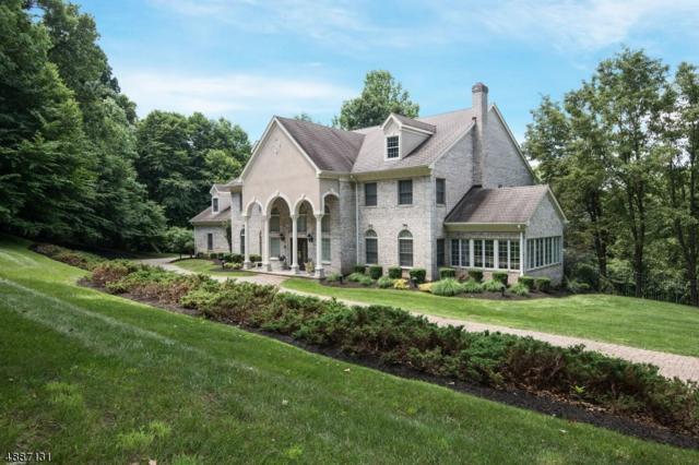 8 Beacon Hill Dr, Chester Twp., NJ 07930 (MLS #3547022) :: SR Real Estate Group