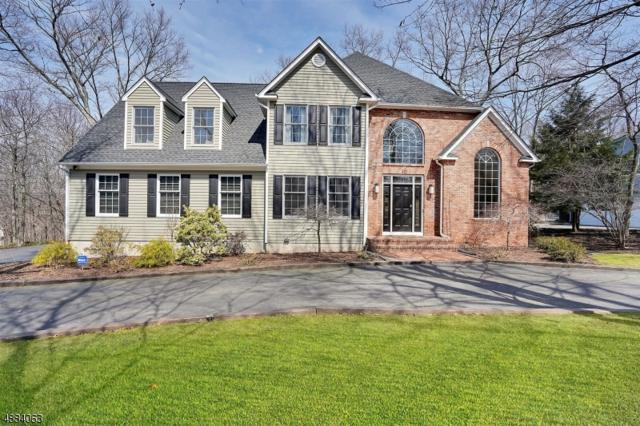 10 Block Ct, Randolph Twp., NJ 07869 (MLS #3547107) :: SR Real Estate Group