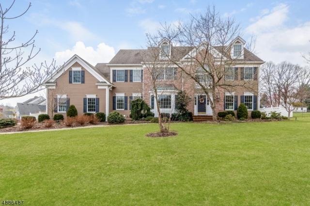 7 Meadowview Rd, Peapack Gladstone Boro, NJ 07934 (#3547143) :: Daunno Realty Services, LLC