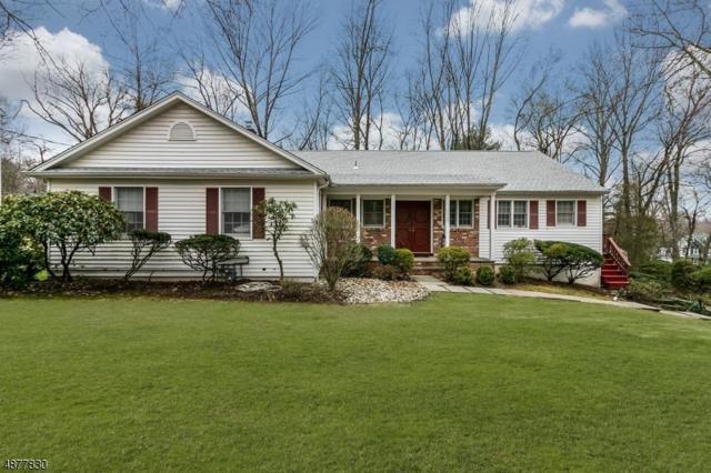 110 Kent Drive, Berkeley Heights Twp., NJ 07922 (MLS #3547191) :: The Dekanski Home Selling Team