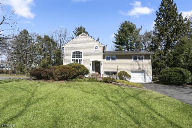 75 Delaware Ave, Haworth Boro, NJ 07641 (MLS #3547525) :: William Raveis Baer & McIntosh