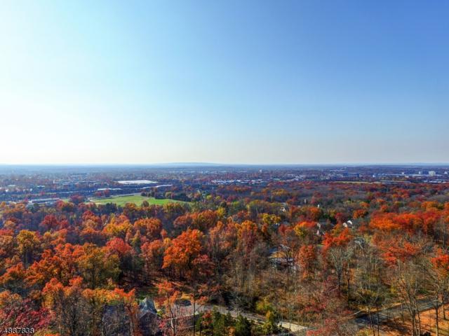 1930 Mountain Top Rd, Bridgewater Twp., NJ 08807 (#3547620) :: NJJoe Group at Keller Williams Park Views Realty