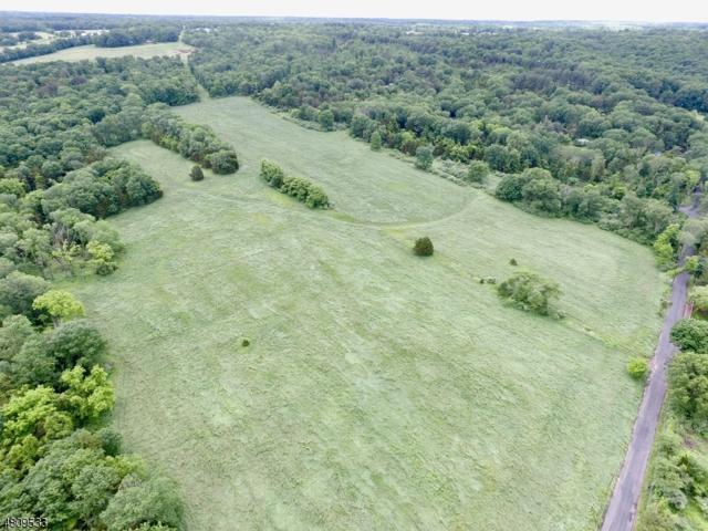 173 Horseshoe Bend Rd, Kingwood Twp., NJ 08825 (MLS #3547901) :: Weichert Realtors