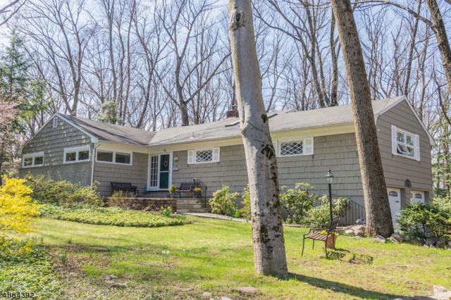 53 Crestview Rd, Mountain Lakes Boro, NJ 07046 (MLS #3548119) :: Weichert Realtors