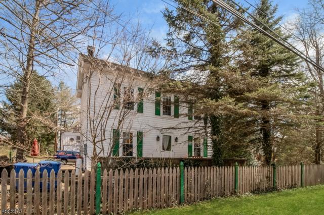 53 Trenton Ave, Frenchtown Boro, NJ 08825 (MLS #3548369) :: SR Real Estate Group