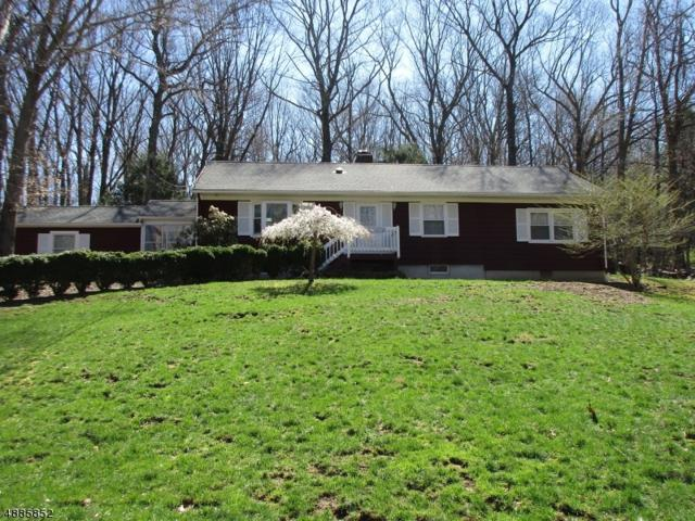 214 North Rd, Chester Twp., NJ 07930 (MLS #3548908) :: SR Real Estate Group