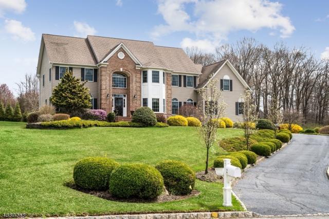 2 Tiger Brook Ln, Chester Twp., NJ 07930 (MLS #3548976) :: SR Real Estate Group
