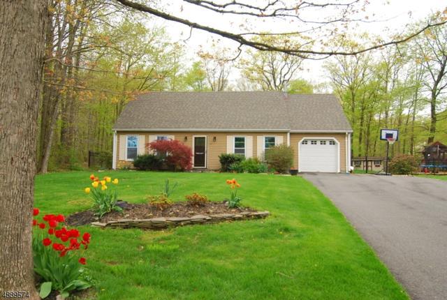 59 Possaghi Rd, Hampton Twp., NJ 07860 (MLS #3549176) :: Zebaida Group at Keller Williams Realty