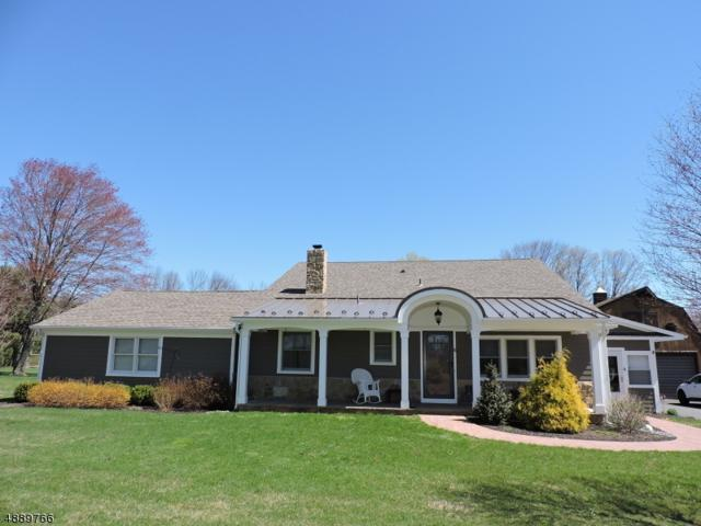 6 Williamson Ln, Chester Boro, NJ 07930 (MLS #3549345) :: William Raveis Baer & McIntosh