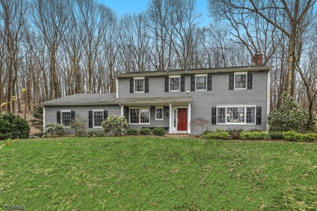 12 Route 24, Chester Twp., NJ 07930 (MLS #3549454) :: William Raveis Baer & McIntosh